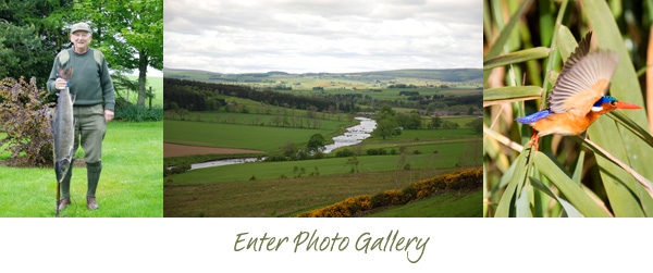 Photo Gallery, Deveron Fishing & Greenmount Guest House, Huntly, Aberdeenshire e