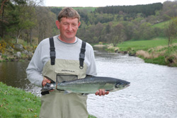 Lower Netherdale, spring salmon